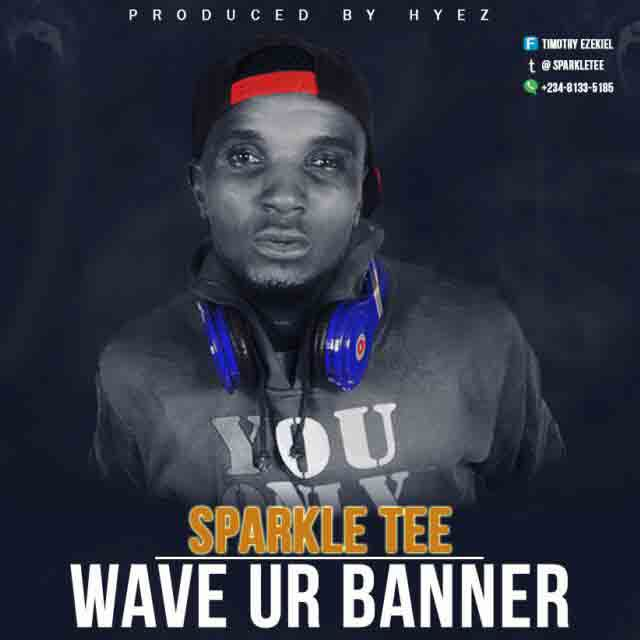 Sparkle Tee - Wave Your Banner