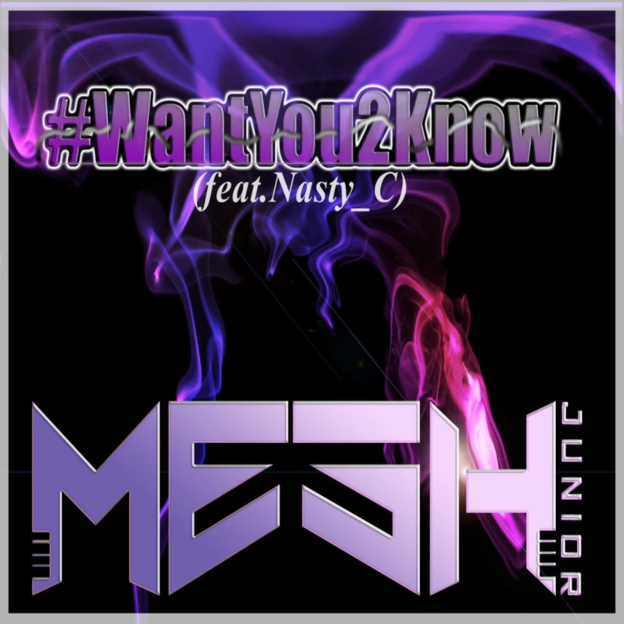 Mesh Junior Ft. Nasty C - Want You 2 Know