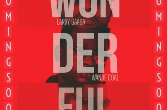 Larry Gaaga ft. Wande Coal & Sarkodie – Wonderful Mp3